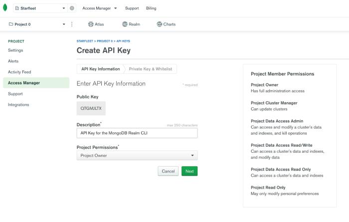 Create API key screenshot in Realm UI