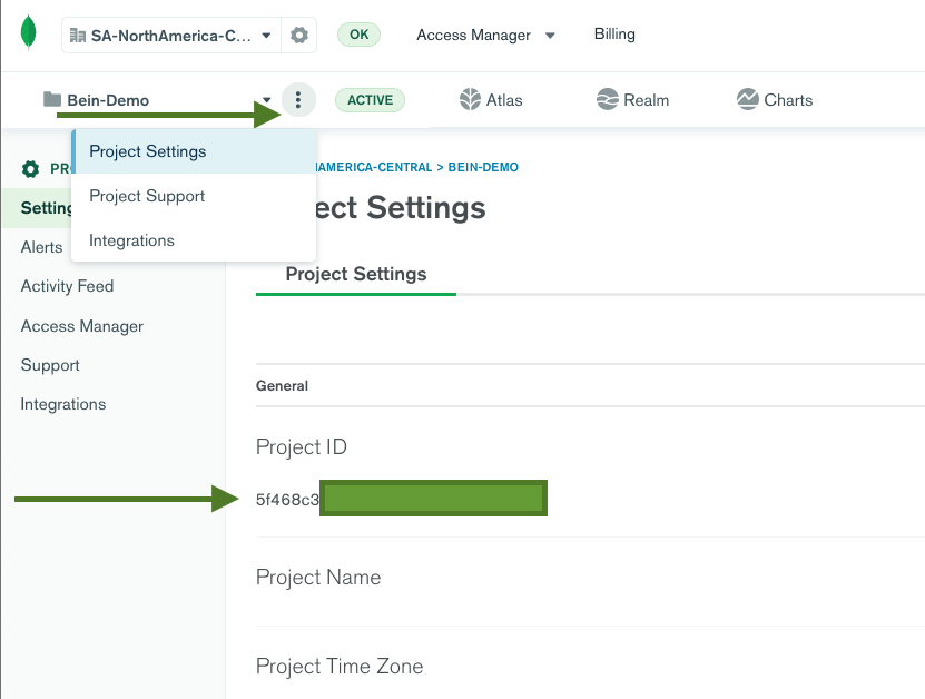 Finding your Project ID on MongoDB Atlas